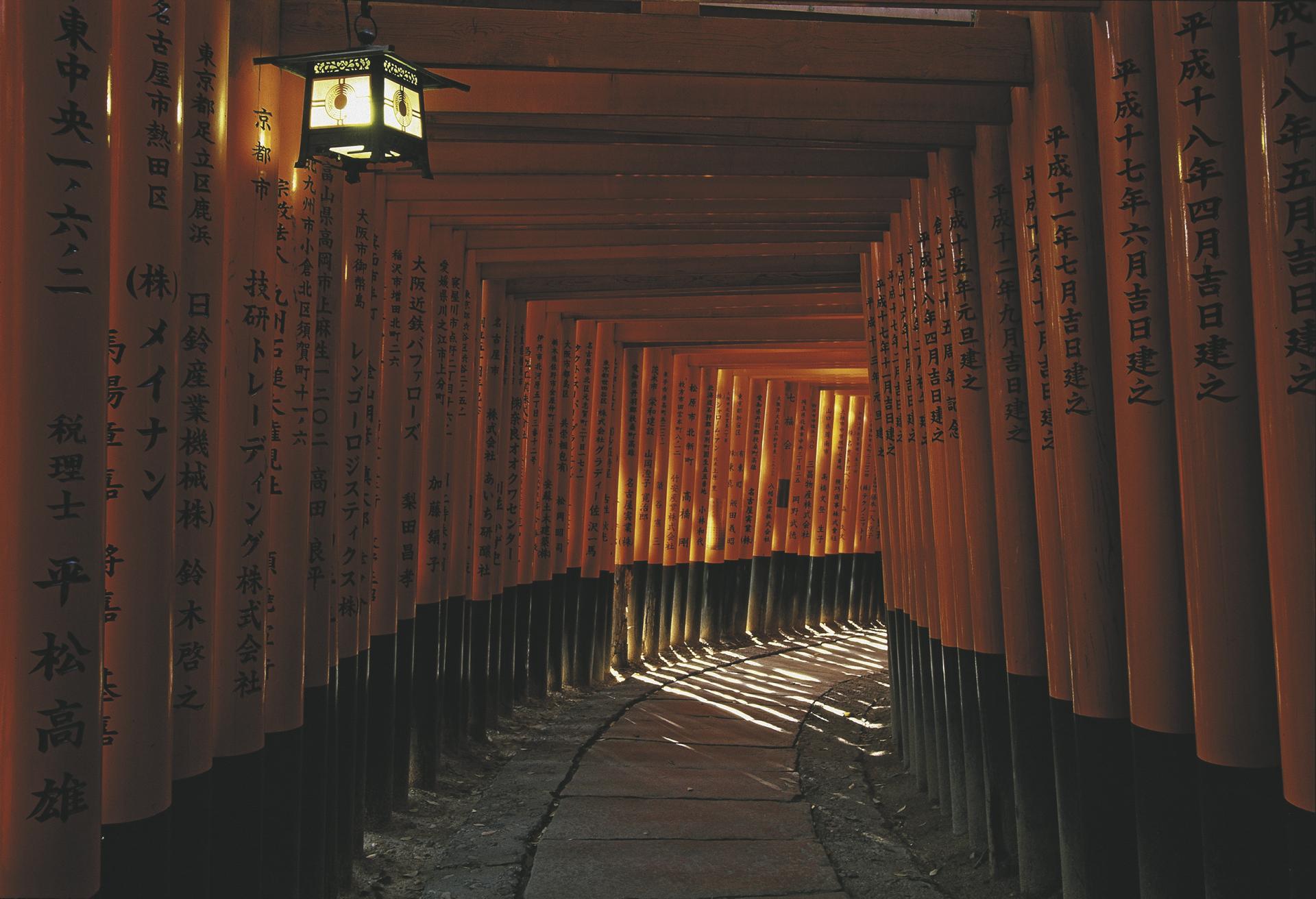 reisen japan individuell