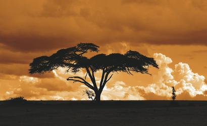 ©Kenya Tourism Board
