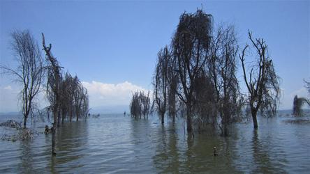 Lake Naivasha Kenia © Kenya-Experience, ©Kenya-Experience