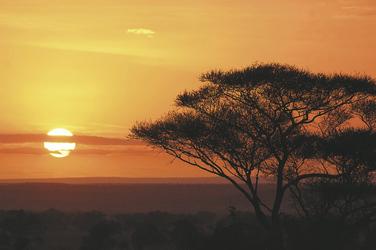 Sonnenuntergang in der Seregenti, ©Karawane