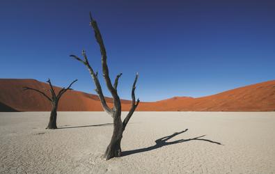 Deadvlei, Namibia Sossusvlei © fotolia
