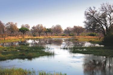 Weite des Okavango-Deltas © pearlmedia fotolia