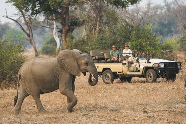© Dana Allen www.photosafari-africa.net
