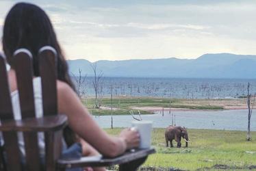 ©Robin Pope Safaris, Changa Safari Camp