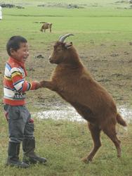©Tour Mongolia