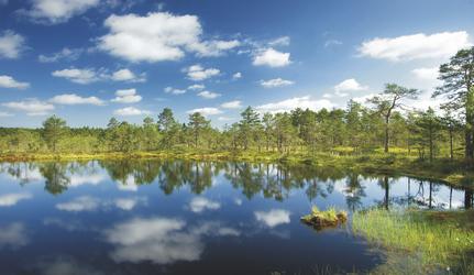 Nationalpark Lahemaa, ©candy1812 - Fotolia