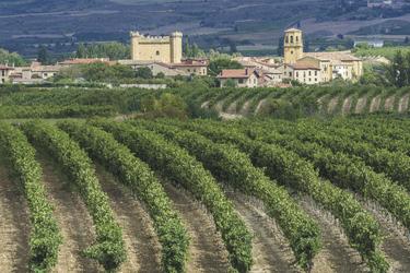 LA Rioja, ©Buzz Spain