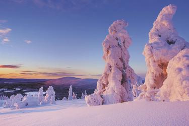 ©Sara Winter - shutterstock.com