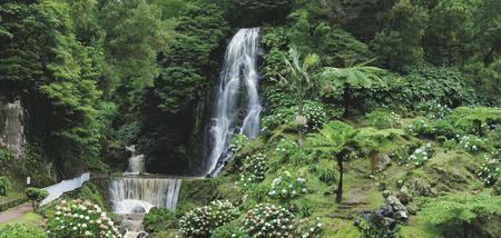 Ribeira dos Caldeiroes Park, Sao Miguel, ©Melo Travel