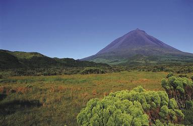 Insel Pico, ©Melo Travel
