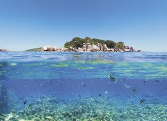 Über und unter Wasser - copyright Variety Cruises, ©Variety Cruises