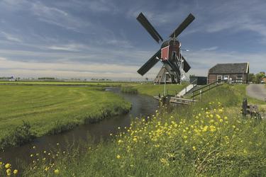 Typische Windmühle in Südholland, ©Markus Abeling
