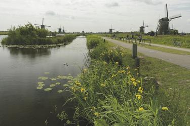 Die Windmühlen von Kinderdijk, ©Markus Abeling