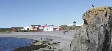 Vogelinsel Vigur - c Island ProTravel, ©Island ProTravel
