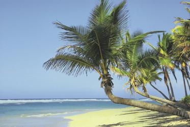 Strand auf Kuba - copyright plantours Kreuzfahrten, ©plantours Kreuzfahrten