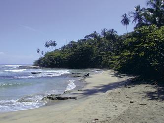 Karibischer Strand in Costa Rica (© Ara Tours)