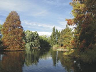 Im Botanischen Garten von Adelaide, ©Karawane